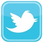 Twitter Bird Icon Logo
