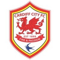 Cardiff City Football Club Logo