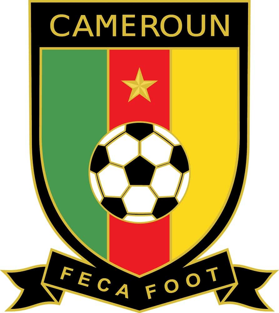federation camerounaise de football cameroon national football team logo
